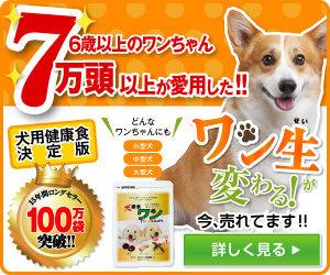 「犬康食・ワン」プレミアム!